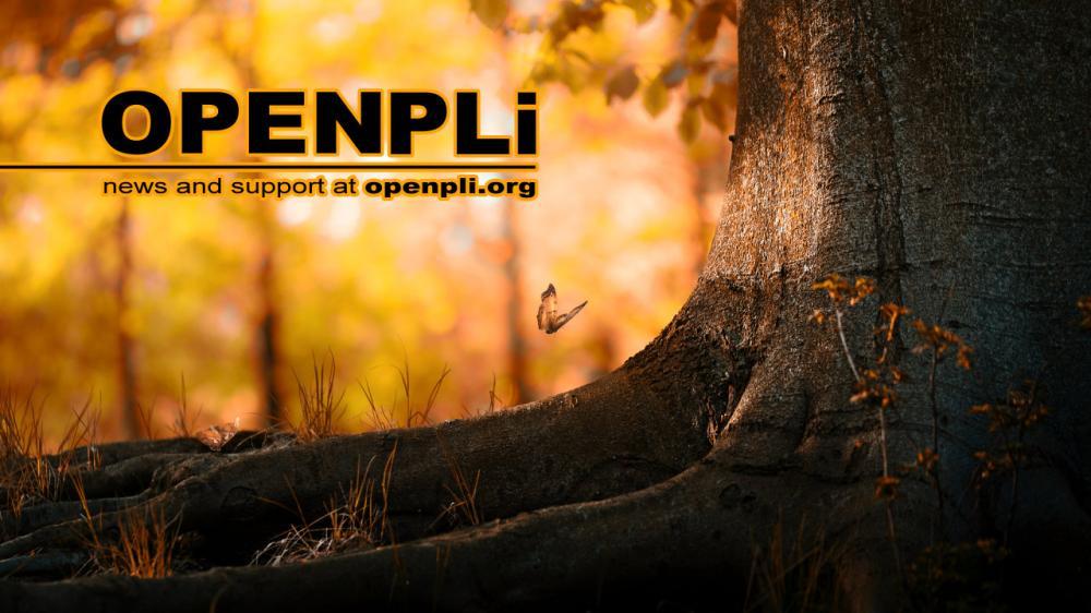 OpenPLi_3.jpg
